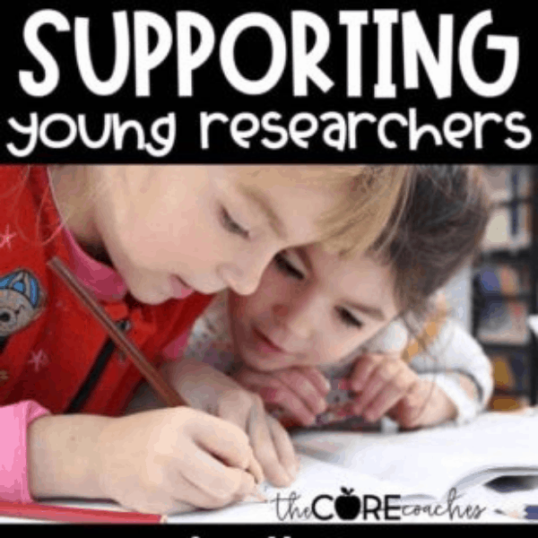 How to Support Young Researchers